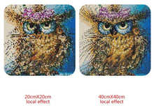 Load image into Gallery viewer, Owl Square Diamond Kit