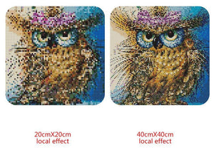 Owl Square Diamond Kit