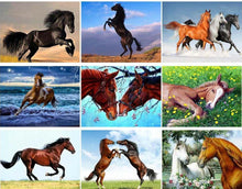 Load image into Gallery viewer, Horse Diamond Paintings