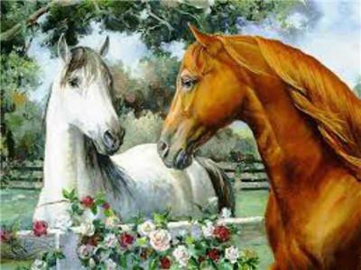 White and Brown Horse couple Painting