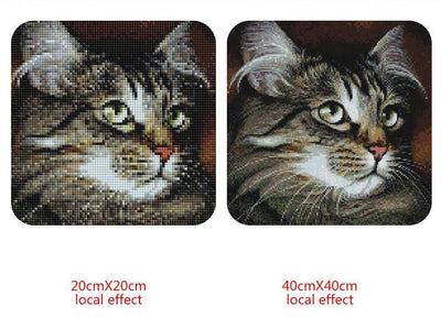 Cat 5D Diamond Painting Kit