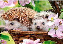 Load image into Gallery viewer, Hedgehog Couple