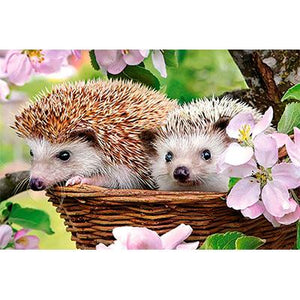 Hedgehog Couple