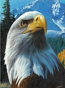 american eagle diamond painting