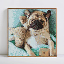 Load image into Gallery viewer, Paint Cute Dog with Diamonds