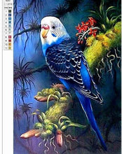 Load image into Gallery viewer, Blue Australian Parrot