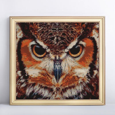 Furious Owl Diamond Painting