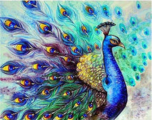 Load image into Gallery viewer, Peacock Drawing Painting - Paint by Numbers