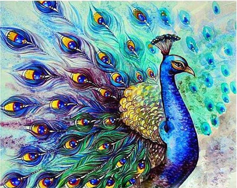 Peacock Drawing Painting - Paint by Numbers