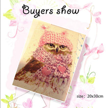 Load image into Gallery viewer, 5D Owl Diamond Painting Kit for Adults