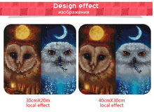 Load image into Gallery viewer, Night Owls Diamond Painting
