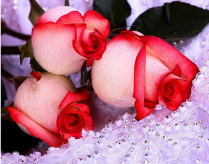 Beauty of Rose Buds - Diamond Art Kit