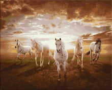 Load image into Gallery viewer, White horses painting my numbers