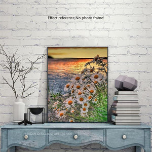 Daisies, Sunset and Sea