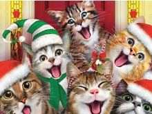 Load image into Gallery viewer, cats xmas diamond painting