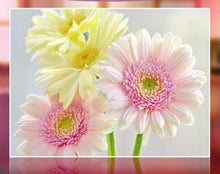Load image into Gallery viewer, Pink and Yellow Flowers