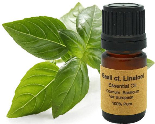 Basil CT. Linalool 5ml, 10 ml or 15 ml
