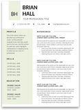 Bristol: Resume Template