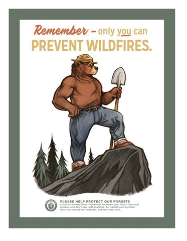 Only You Can Prevent Forest Fires Smokey the Bear Poster