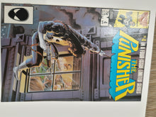 Load image into Gallery viewer, Punisher 1-5 Original Limited Series