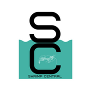 ShrimpCentral is the destination for shrimp and aquarium products!