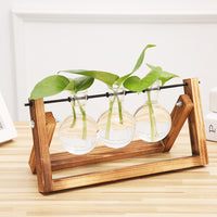 Glass Tabletop Planter