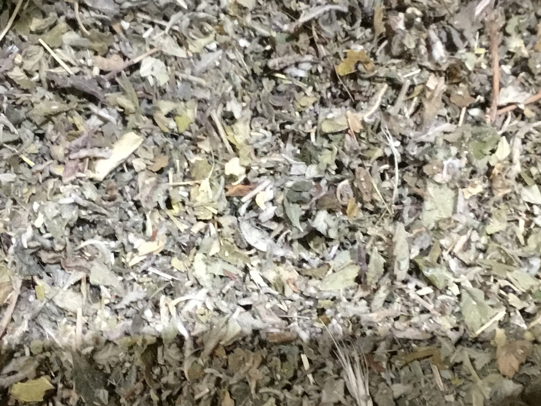 Damiana (turnera aphrodisiaca) en feuille  coupée finement 500g - HERBA BARONA