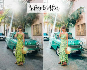 Desktop Lightroom Preset *CALYPSO*