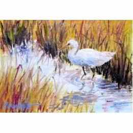 Framed Oil on Canvas by Diane Carnevale - Wading for Nibbles-Room Tonic