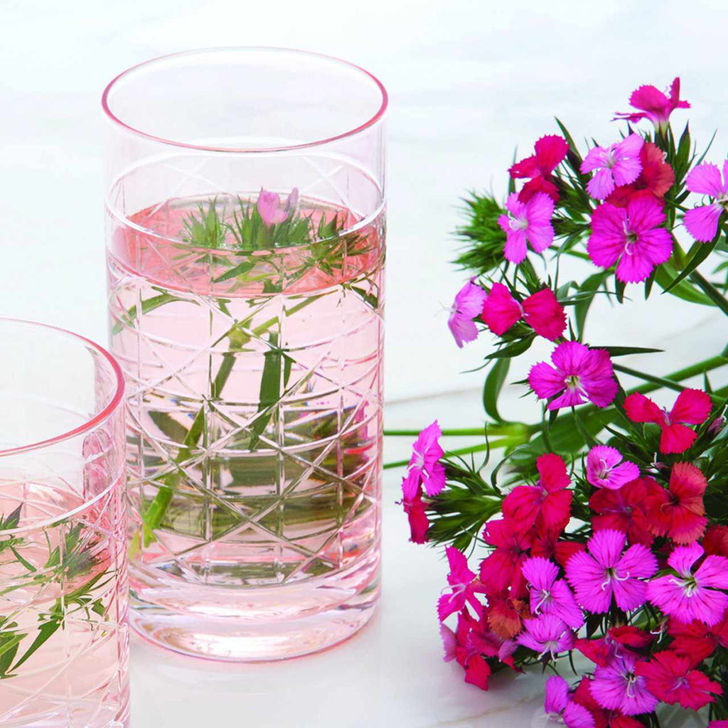 Pink Cane Highball Glass-Room Tonic