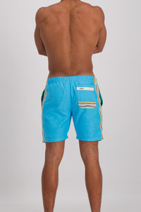 Hipster Shorts - Earthy Blue