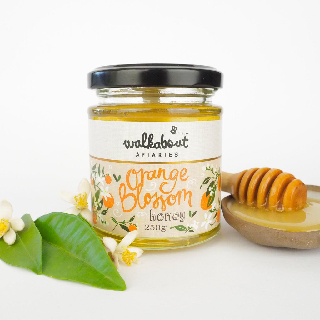 Orange Blossom Honey - Walkabout Apiaries-Honey- Walkabout Apiaries