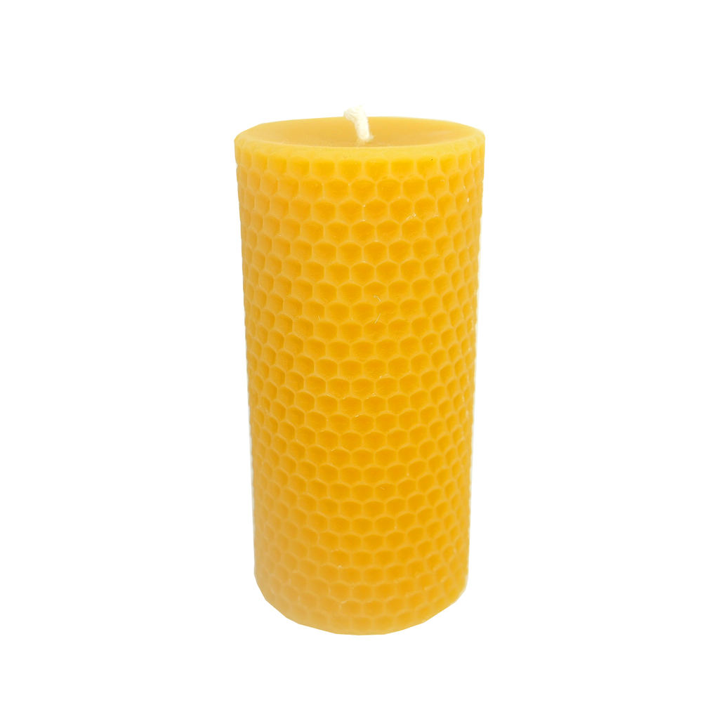 Dolly - 55hrs Burn Time - Ivy & Vanda-Beeswax Candle- Walkabout Apiaries