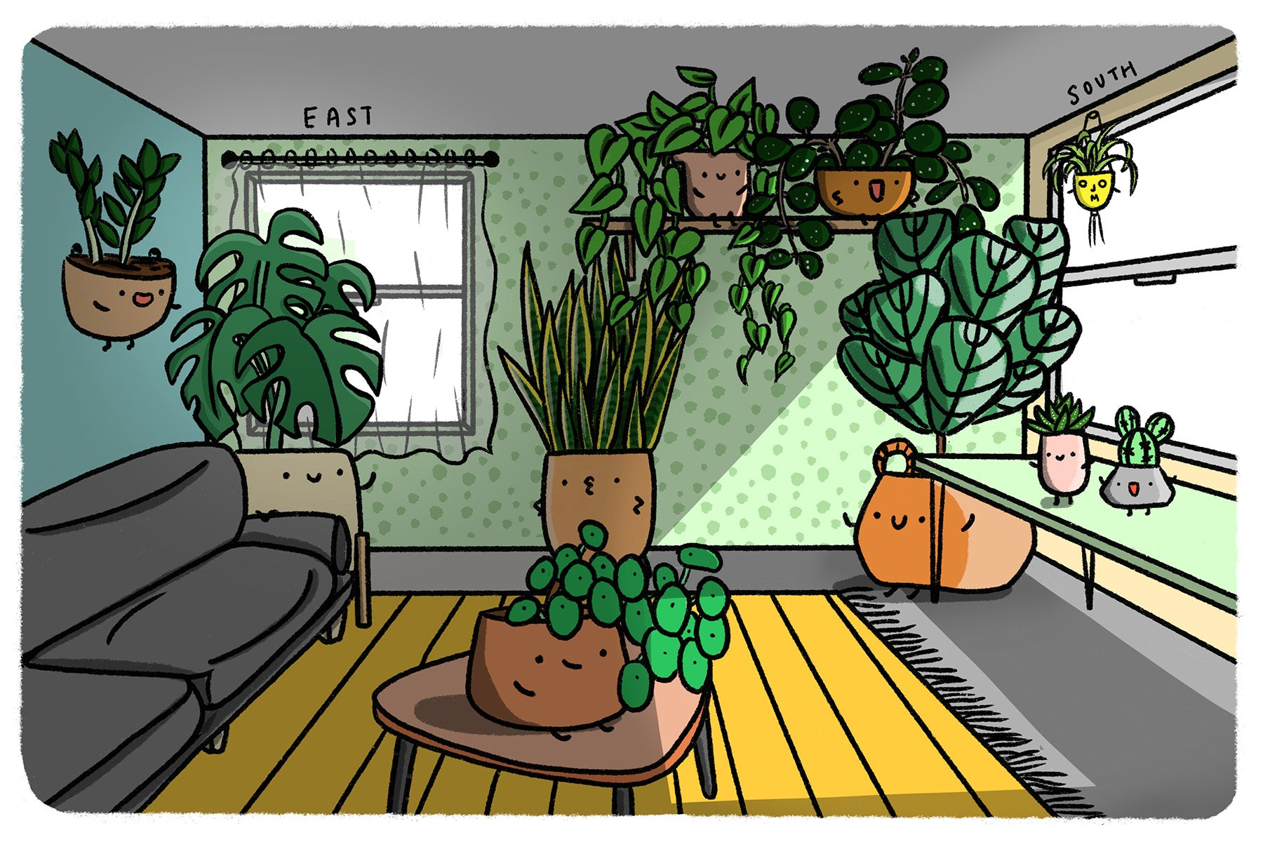 The Ultimate Houseplant Lighting Guide: Light Requirements for Indoor Plants Explained - JOMO Studio