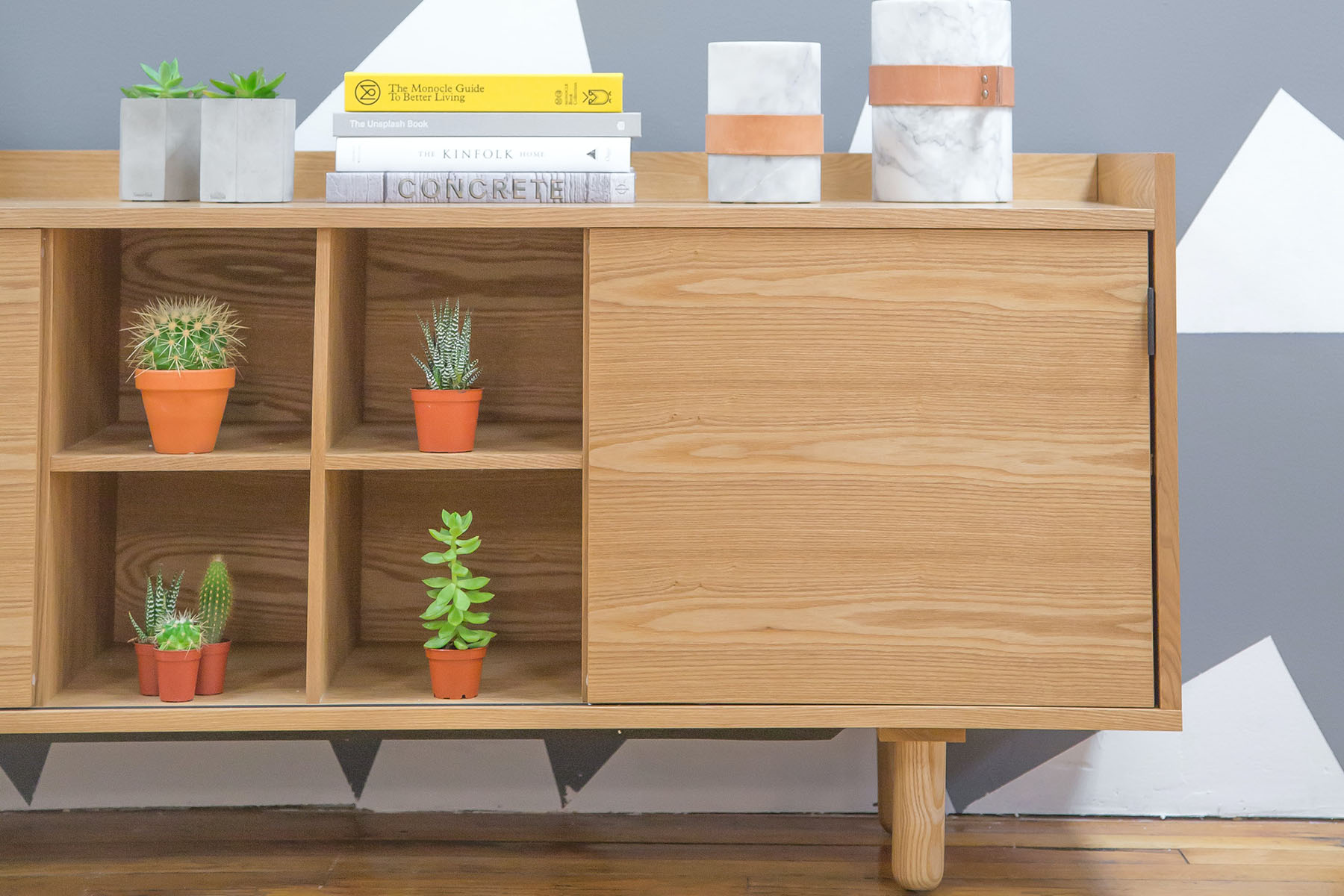 succulent on a sideboard