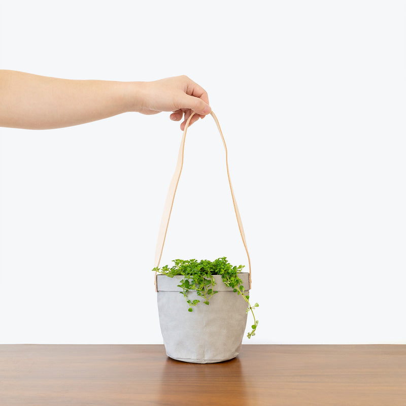 Eco-Friendly Washable Paper Hanging Basket Planter - JOMO Studio
