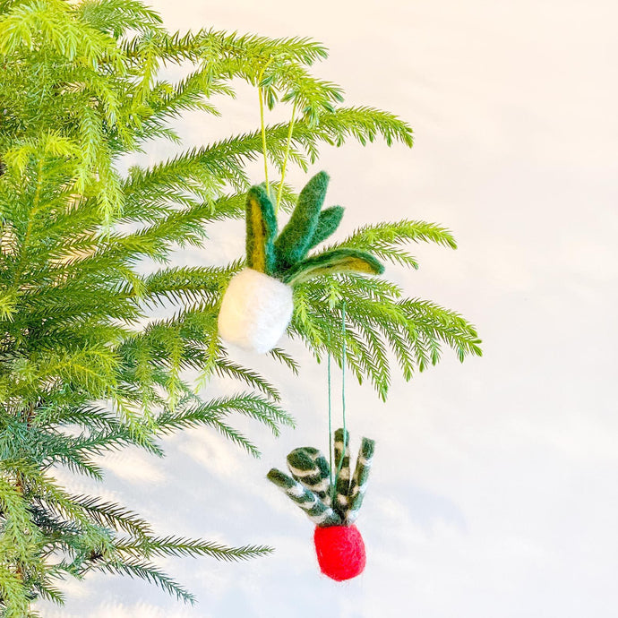 Felt Succulent Ornaments - Toronto Succulent Ornament Needle Felting Workshop - JOMO Studio