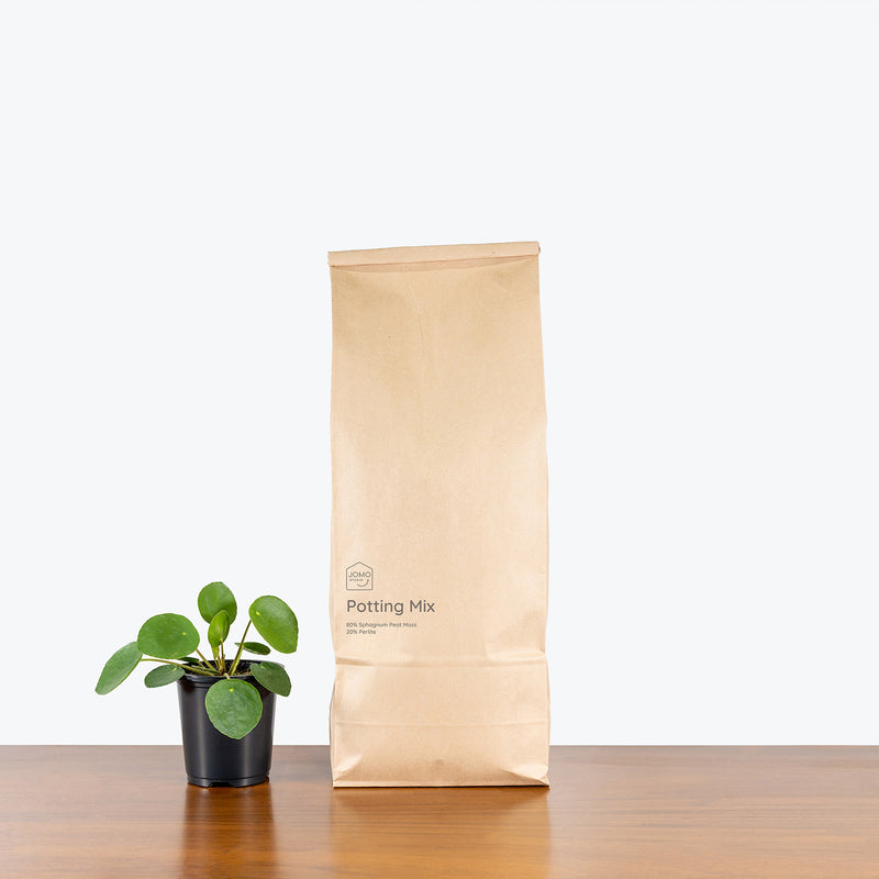 Potting Mix - House Plants Delivery Toronto - JOMO Studio
