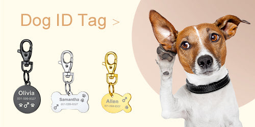 Custom4u Personalized Dog ID Tag