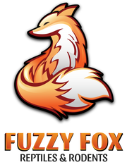 Fuzzy Fox Reptiles and Rodents