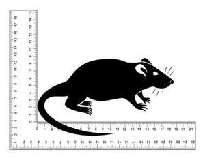 Large Rat 3 per pack (8-10wks/180-240g) - Fuzzy Fox Reptiles and Rodents