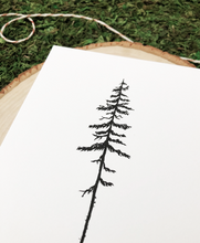 Load image into Gallery viewer, Lone Pine 4x6 Art Print