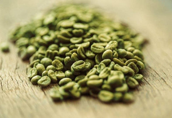 The Green Coffee Bean Story