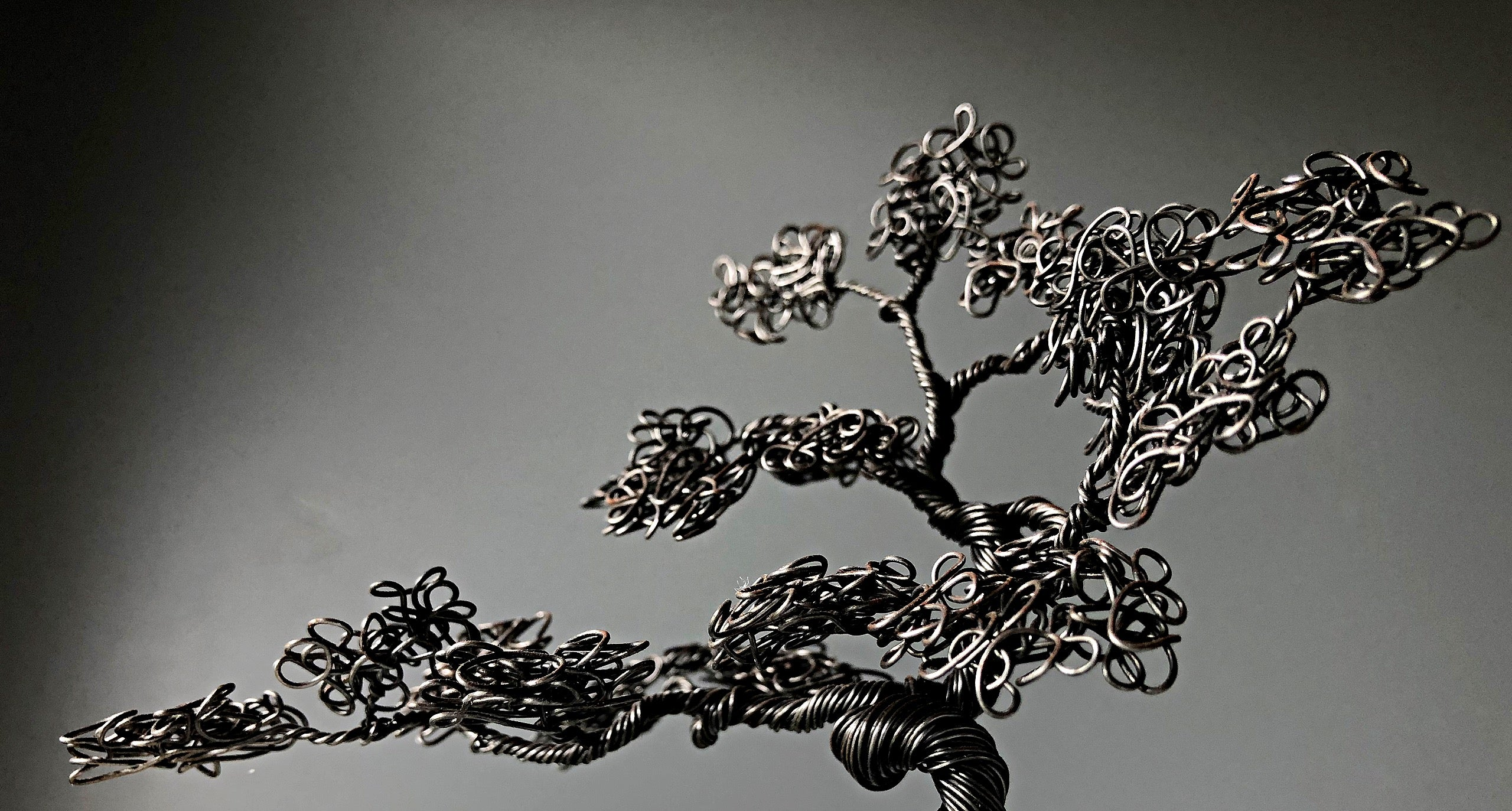 Slate Bonsai Tree