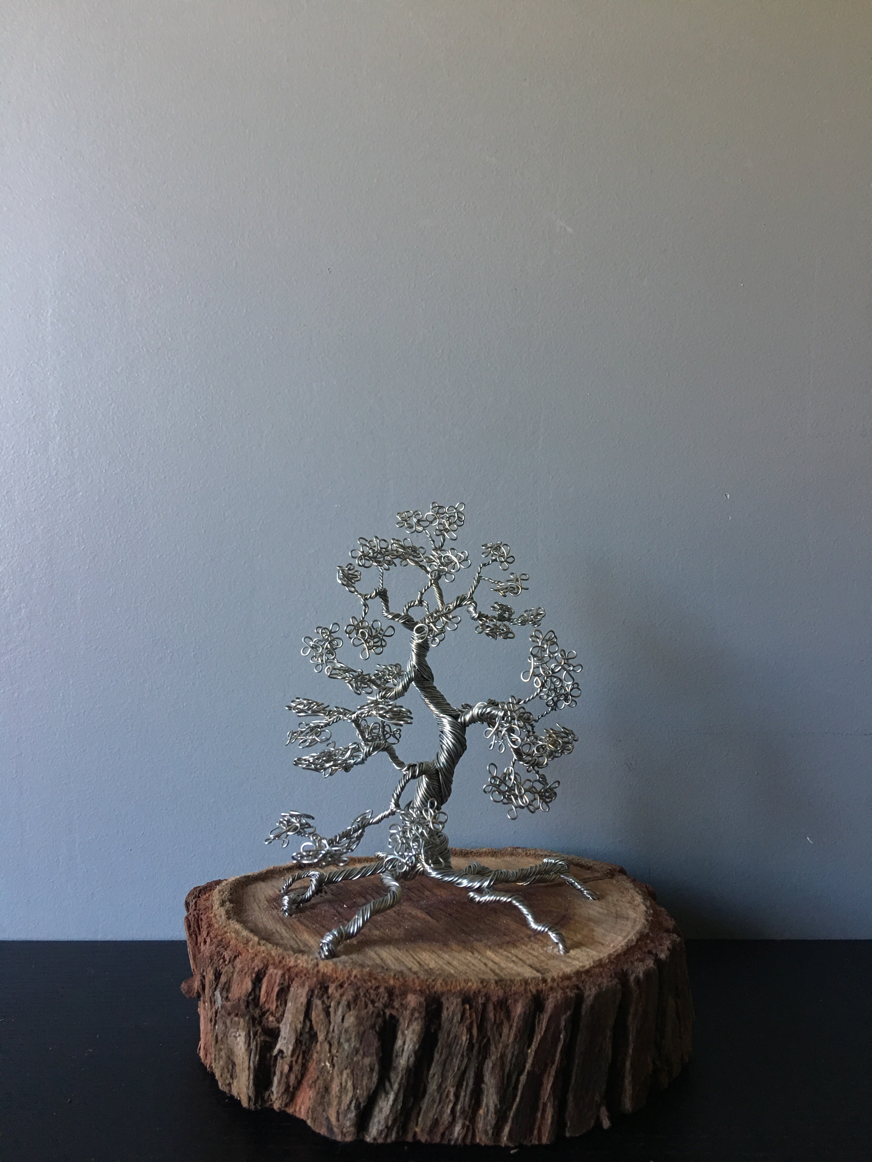 SIlver Bonsai on Wood