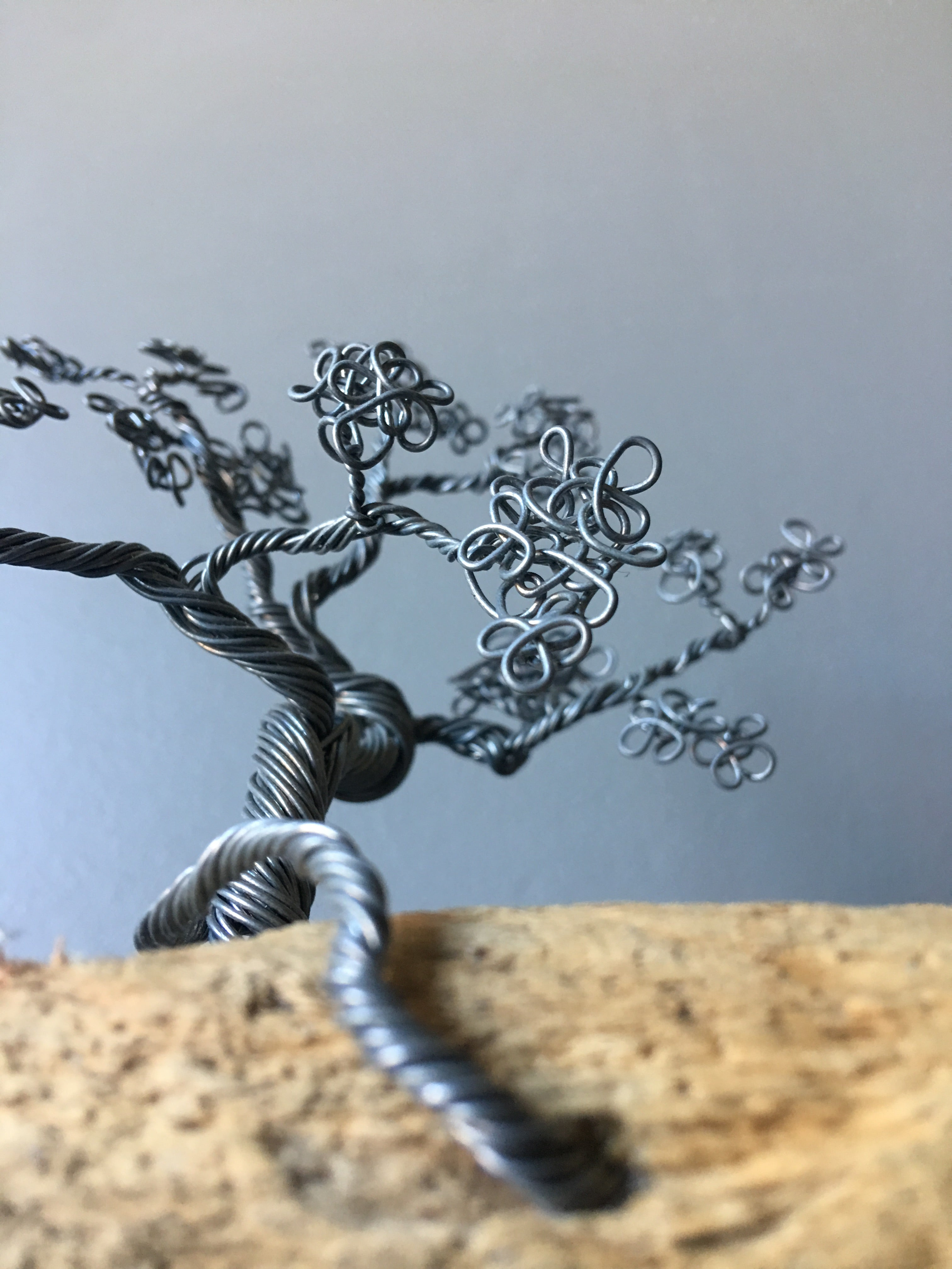 Silver Bonsai Trio on Wood