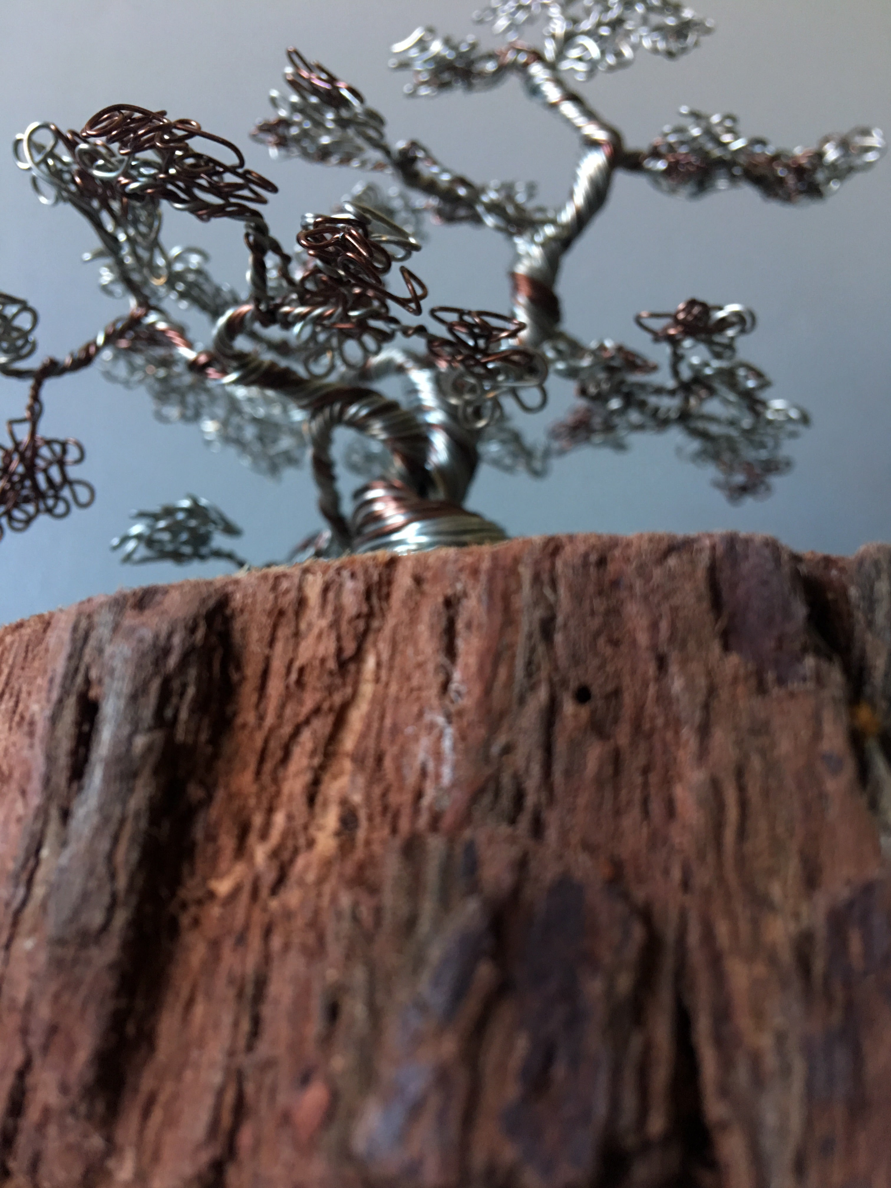 Silver and Bronze Bonsai on Wood