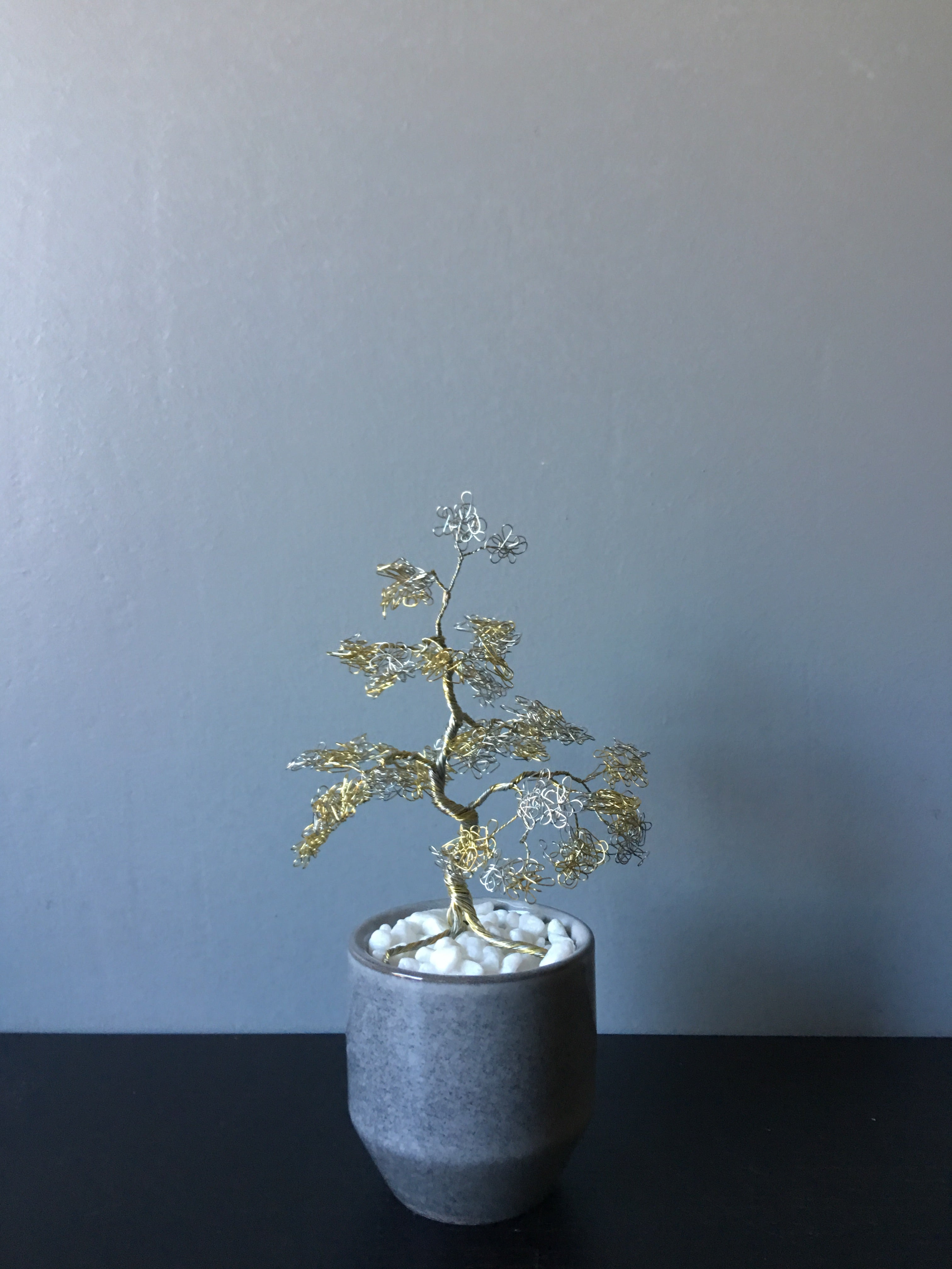 Silver and Yellow Bonsai in Grey Pot
