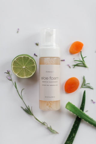 ALOE FOAM CLEANSER | All Skin Types