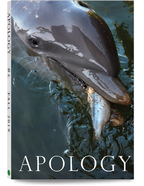 Apology Magazine Issue 5 Fall 2019
